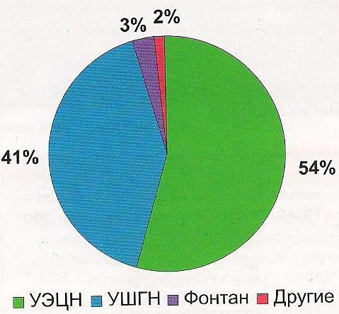 Структура фонда нефтяных добывающих скважин в 2009 году